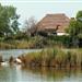 vacanze estive a Lignano Sabbiadoro: scoprire la natura e l'ecositema della laguna